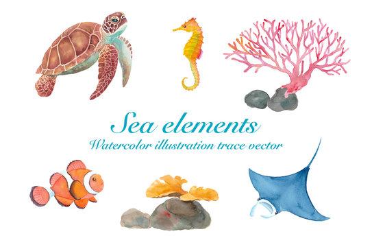 海のいきもの色々(ウミガメ、マンタ、カクレクマノミ、タツノオトシゴ、サンゴ) 水彩イラストのトレースベクター