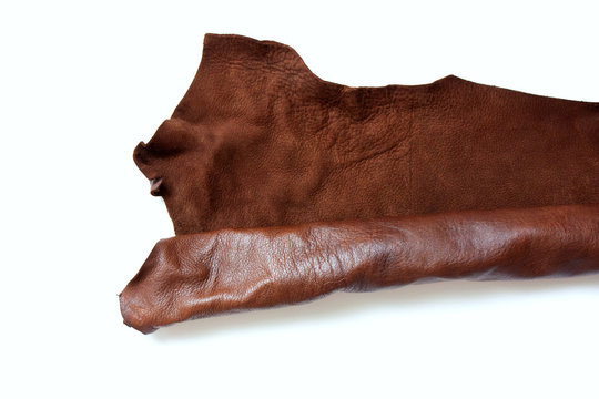 Leather in roll isolated on white background. Piece of brown leather isolated on white