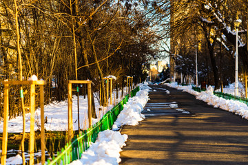 Empty alley in the Bucharest North Railway Park in a cold winter morning, Bucharest, Romania, 2020