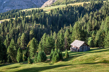 Wall Mural - Wooden cottage in forest, Passo delle Erbe, Dolomites, Europe