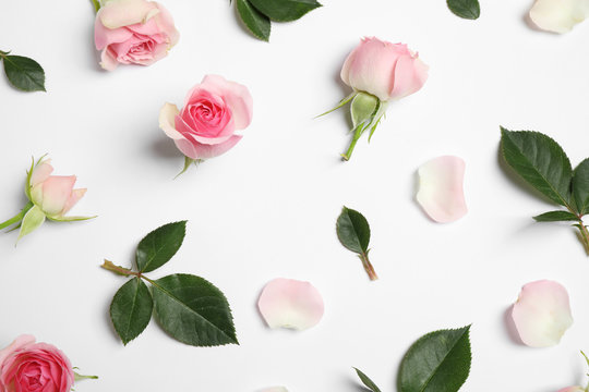 Composition with beautiful flowers on white background, top view. Floral card design