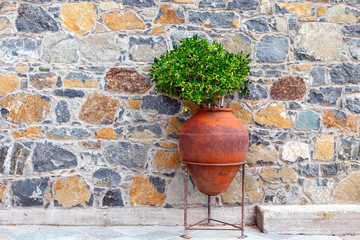 A large old terracotta amphora is used as a flower pot
