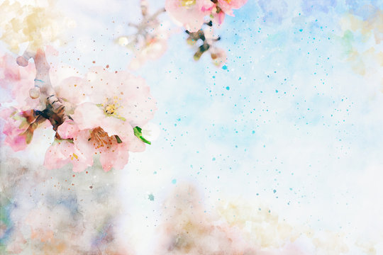 watercolor style and abstract image of cherry tree flowers