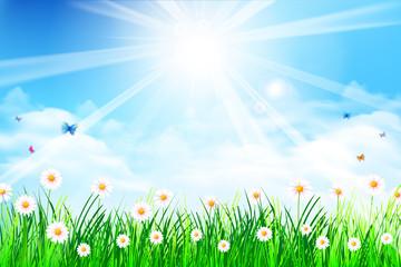 Spring Background 006
