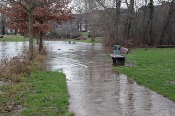 Hochwasser am Rhein in Deutschland