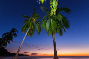 Wall Mural - Tropical beach at dark