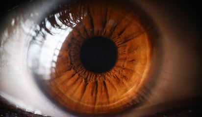 Close-up human eye, lens, cornea and brown iris. Eye health prevention. Examination symptoms disease by eyeball. Beautiful human eye. Look in oneself person thinking genetics and color scheme eye.