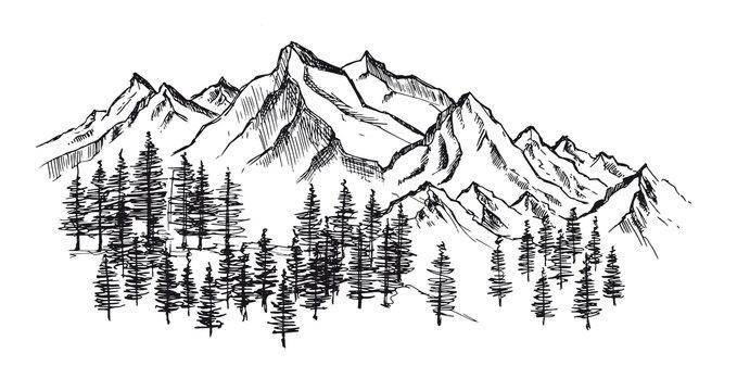 Mountain landscape, hand drawn illustration
