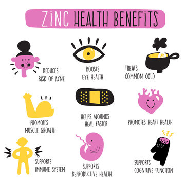Zinc health benefits. Infographics. Vector cartoon illustration.