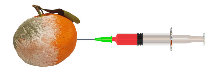 syringe rotten orange fruit isolated biology