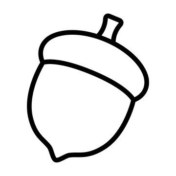 Acorn or oaknut seed line art vector icon for nature apps and websites