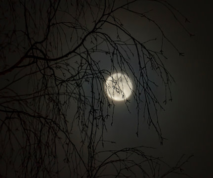 Winter full moon in February. Snow Moon
