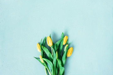Wall Mural - Blue background with spring tulips, festive composition for spring holidays