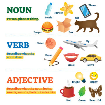 Nouns, verbs and adjectives school study guide, vector illustration