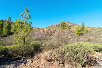 Landscape with mountains in sunny winter day in Gran Canaria