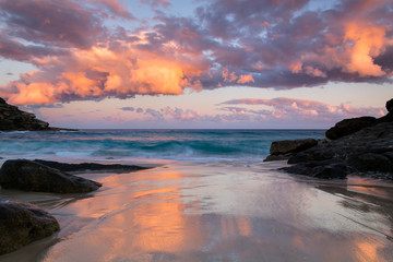 Door stickers Lavender Tamarama Beach at sunset, Sydney Australia