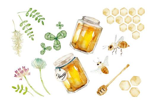 ハチミツ セット 水彩 イラスト