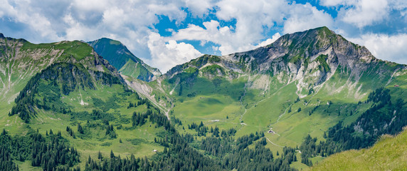 Zelfklevend Fotobehang Olijf Switzerland, Panoramic view on green Alps around Saxeten valley