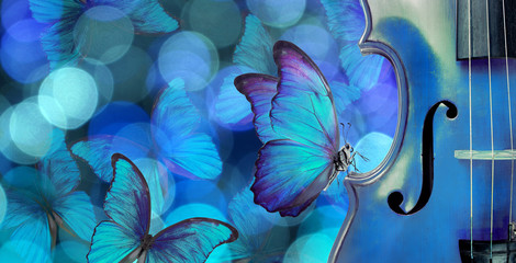 blues music concept. melody concept. butterfly sitting on a violin. violin on a blurry blue background. blurry lights and blue morpho butterflies.
