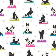 Yoga dogs poses and exercises seamless pattern design. Border collie clipart
