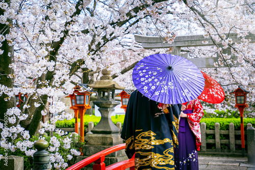 Wall mural Tourist wearing japanese traditional kimono and cherry blossom in spring, Kyoto temple in Japan.