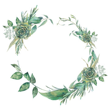 Watercolor greenery, succulent and eucalyptus branches wreath. Floral clip art: round frame isolated on white background.