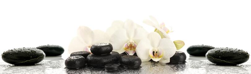 Poster de jardin Orchidée Storczyki na kamieniach
