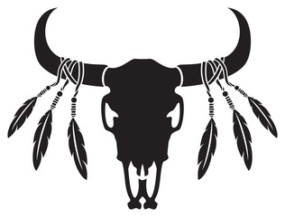 Native American bull or cow skull with feathers (vector illustration)