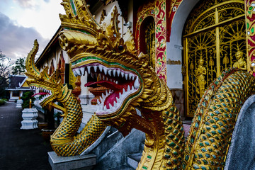 golden dragon on the roof of temple, digital photo picture as a background