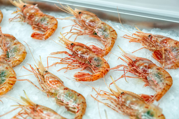 Boiled sea prawns lie on ice crumbs. Shrimps are laid flat on the surface of the ice.