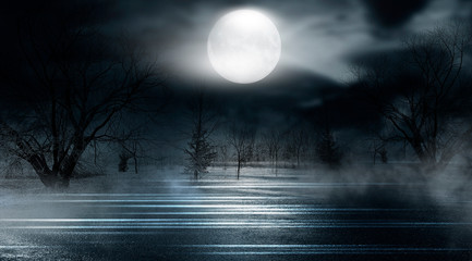 Dramatic nature background. Terrible forest at night. Cloudy night sky, moonlight, reflection on the pavement. Smoke and fog on a dark street at night. Fototapete