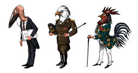 Bird man, Bald eagle and marabou head in military uniform. Dressed Rooster or Cock cowboy. Hand drawn fashionable cockerel. Engraved old monochrome sketch. Mythical fashion creature in hipster style.
