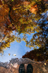 Tree leaves shadow and blue sky reflected on water stream surface in tropical forest at Phu Kradueng National park, Loei - Thailand
