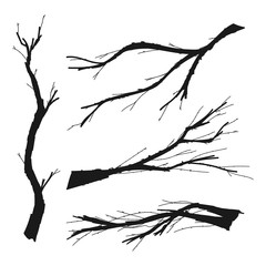 Dry tree branch vector black silhouette set isolated on a white background.