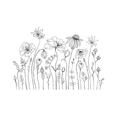 Fototapeta Hand drawn wildflowers and poppies. Decorative vector set in doodle style for your template.