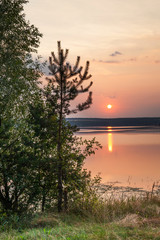 Romantic fairytale sunset on the shore of a lake. Spruce fir tree silhouette, idyllic relaxation...