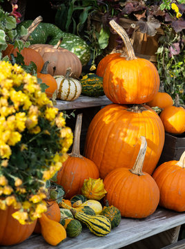A stack of pumpkins with gourds and flowers at a farm stand, vertical