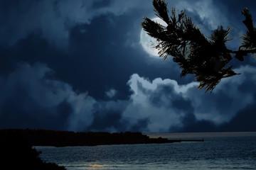 Papiers peints Bleu nuit Douarnenez. Clair de lune sur la plage du Ris. Finistère. Bretagne