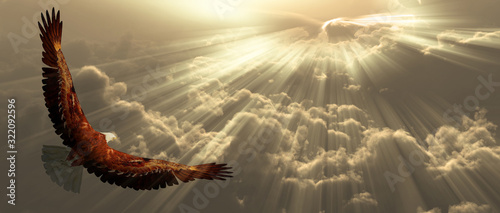 Wall mural Eagle in clouds