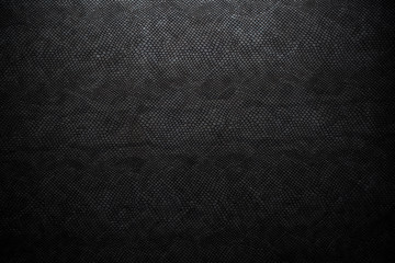 black snake skin texture for background Wall mural