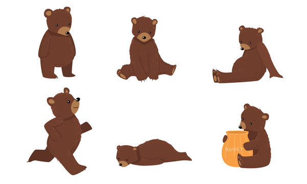 Set of brown bears in everyday life situations. Vector illustration in flat cartoon style.