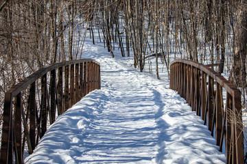 bridge in winter forest