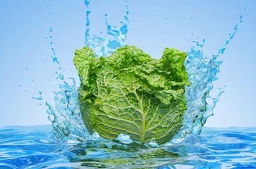 Savoy cabbage with water splashes, 3D rendering