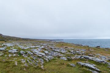 Coastline Burren Ireland