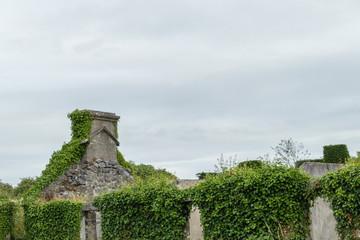 House Ruin Ballyvaughan