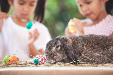 Cute Holland lop rabbit sitting on the table with two asian child girls drawing and painting on easter eggs together in background at easter festival