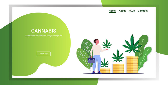 businessman holding cannabis leaf hemp plants growing on stacks of money coins marijuana business drug consumption concept full length copy space horizontal vector illustration