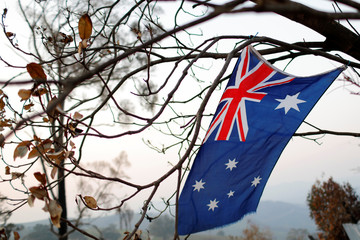 An Australian flag hangs from a burnt tree on the bushfire affected property of Jeff McCole, 70, in Buchan, Victoria, Australia