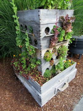 Compost worm bin and grow box garden planter made out of old drawers