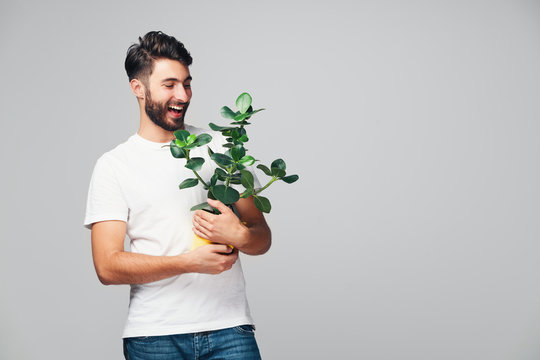 Handsome smiling young man holding potted plant isolated on grey background